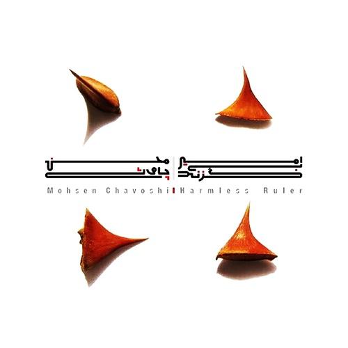 محسن چاوشی آهنگ امیر بی گزند